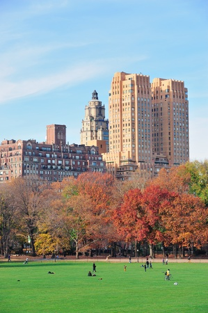 central park: New York City Central Park at autumn in midtown Manhattan with colorful foliage and people on lawn
