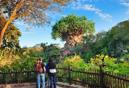 ORLANDO, FL - FEB 13: The Tree of Life and tourists on February 13, 2012 in Orlando, Florida. Animal Kingdom is the largest single Disney theme park in the world covering more than 500 acres.