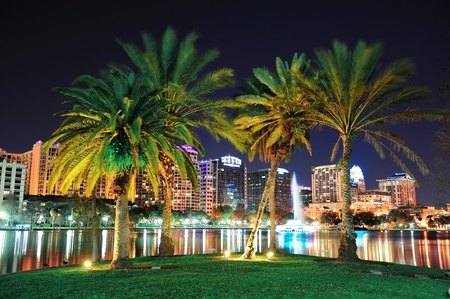Orlando downtown skyline panorama over Lake Eola at night with urban skyscrapers, tropic palm tree and clear sky. Stock Photo - 12993105