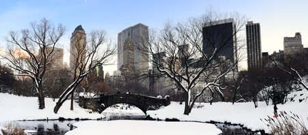 winter sunrise: New York City Manhattan Central Park panorama in winter with snow, bridge; freezing lake and skyscrapers at dusk