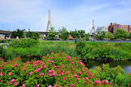 Boston Leonard P. Zakim Bunker Hill Memorial Bridge with blue sky in park with flower as the famous land mark. photo