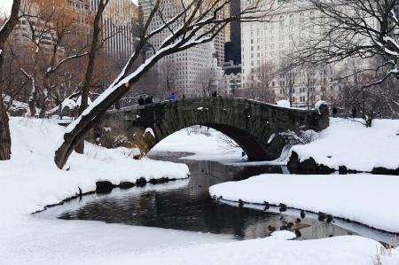 january sunrise: New York City Manhattan Central Park panorama en invierno con la nieve, puente, lago helado y rascacielos al atardecer.