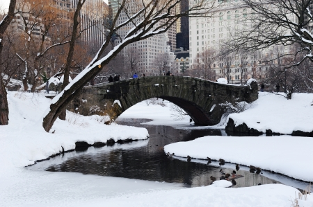 New York City Manhattan Central Park panorama in winter with snow, bridge; freezing lake and skyscrapers at dusk. Фото со стока