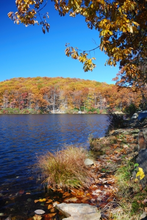Autumn Mountain with lake view and colorful foliage in forest. photo