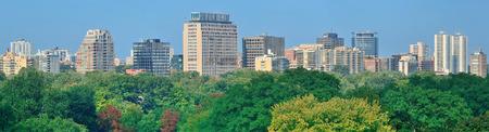 city park skyline: Toronto city skyline view with park and urban buildings
