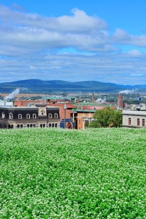 urban colors: Vista la ciudad de Quebec en el día con césped verde y los edificios urbanos