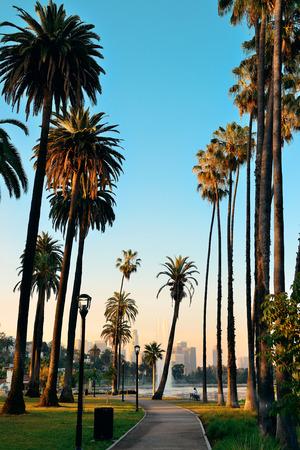 Los Angeles Downtown Blick auf den Park mit Palmen. Standard-Bild