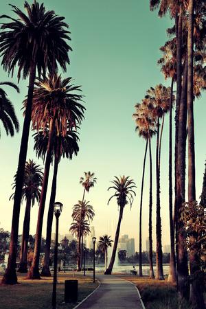 Los Angeles Downtown Blick auf den Park mit Palmen. Lizenzfreie Bilder