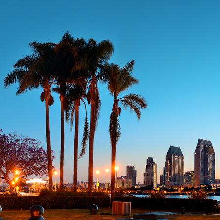 ヤシの木のシルエットと早朝に San Diego の夜明け。