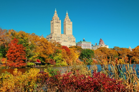 central park: Central Park Autumn and buildings in midtown Manhattan New York City Stock Photo