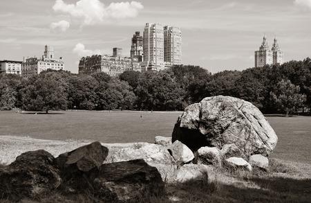 city park skyline: Central Park Spring with skyline in midtown Manhattan New York City