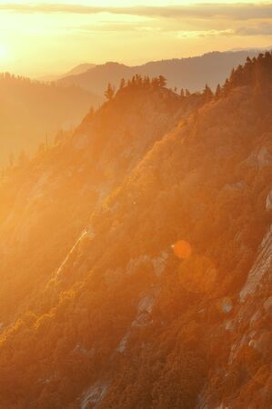 kings canyon national park: Sequoia National Park at sunset with mountain ridge