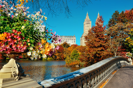 autumn in the park: Central Park Autumn and buildings in midtown Manhattan New York City Stock Photo