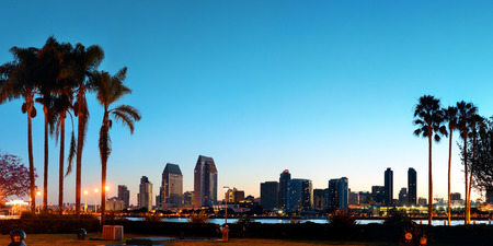 San Diego dawn in early morning with palm tree silhouette.