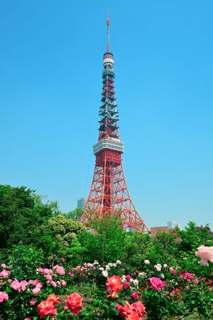 urban people: Tokyo Tower as the city landmark with flowers. Japan.
