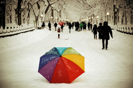urban city: Umbrella and tourists in Central Park winter in midtown Manhattan New York City