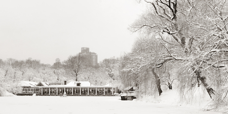 winter park: Central Park panorama winter in midtown Manhattan New York City