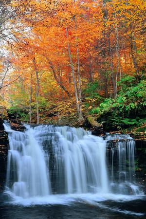 Herfst watervallen in het park met kleurrijke bladeren.