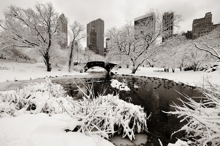 winter park: Central Park winter with skyscrapers and bridge in midtown Manhattan New York City