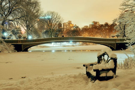 winter park: Central Park winter with frozen lake and chair at night in midtown Manhattan New York City