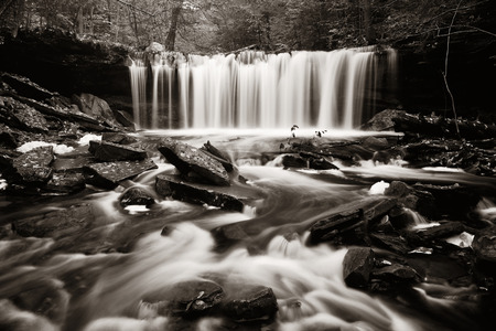 waterfall: Waterfalls in woods in black and white.