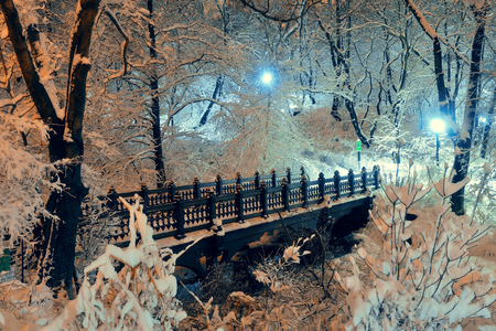 city landscape: Central Park winter bridge in midtown Manhattan New York City Stock Photo