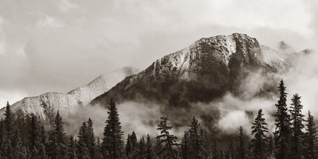fog white: Banff national park view panorama with foggy mountains and forest in Canada. Stock Photo