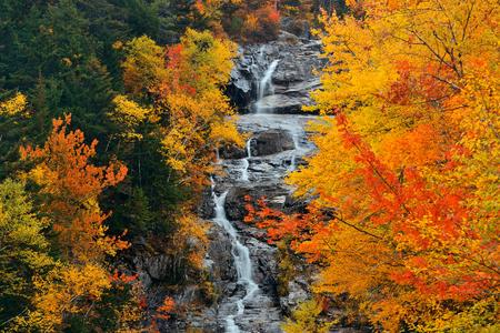 america countryside: Colorful Autumn creek, White Mountain, New Hampshire.