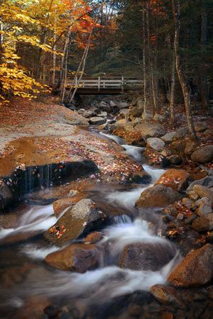 america countryside: Colorful Autumn creek bridge, White Mountain, New Hampshire.