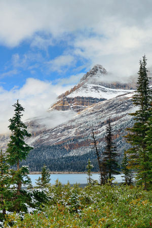 snow capped: Bow Lake with snow capped mountain and forest in Banff National Park Stock Photo