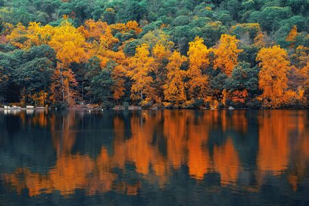 state park: Autumn colorful foliage with lake reflection. Stock Photo