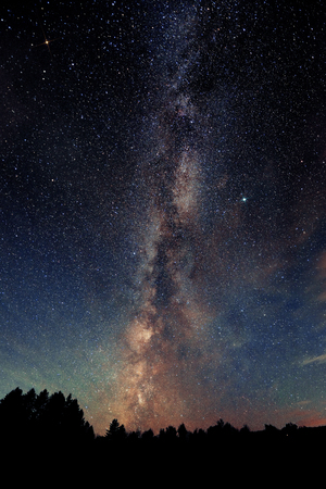 Milky Way over forest in Stowe, Vermont.