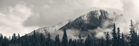 banff national park: Banff national park view panorama with foggy mountains and forest in Canada. Stock Photo