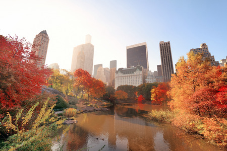 garden city: Central Park with morning bright sunlight and urban skyscrapers in Autumn in New York City. Stock Photo