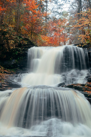 waterfall: Autumn waterfalls in park with colorful foliage.