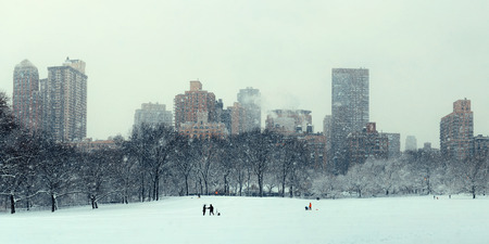 winter park: Central Park winter in snow with skyscrapers in midtown Manhattan New York City