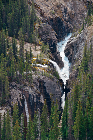banff: Forest and waterfall in Banff National Park, Canada