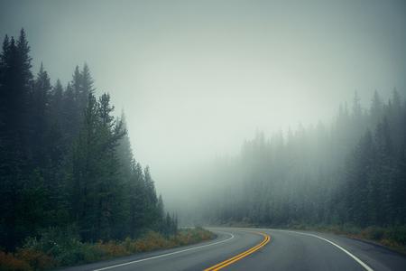 banff: Foggy road at dusk in Banff National Park Stock Photo