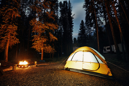 banff national park: Camping in forest with tent light and bonfire in Banff National Park