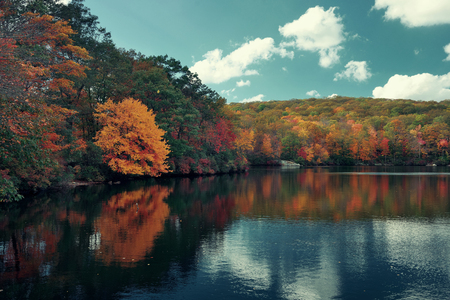 new scenery: Autumn colorful foliage with lake reflection. Stock Photo