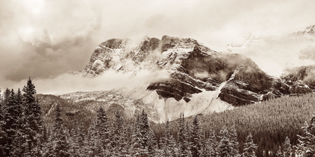 snow capped mountain: Bow Lake panorama with snow capped mountain and forest in Banff National Park Stock Photo