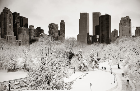 white winter: Central Park winter with skyscrapers in midtown Manhattan New York City
