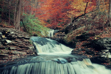 glen: Autumn waterfalls in park with colorful foliage.