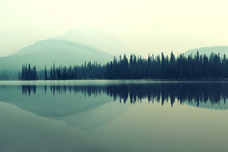 fog forest: Mountain and forest over lake with reflections in a foggy day.