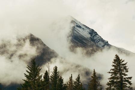 Banff National Park mistig bergen en bossen in Canada.