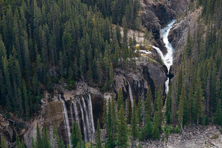 banff national park: Forest and waterfall in Banff National Park, Canada