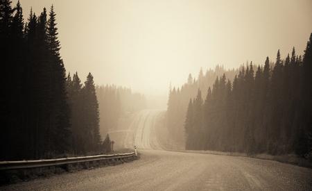 Foggy Straße im Wald in Banff Nationalpark Standard-Bild