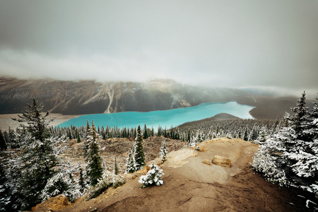 banff national park: Peyto Lake in winter with snow in Banff National Park, Canada Stock Photo