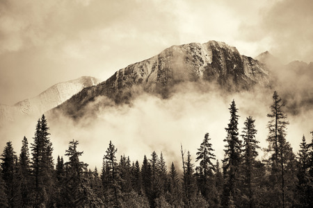banff national park: Banff national park foggy mountains and forest in Canada. Stock Photo