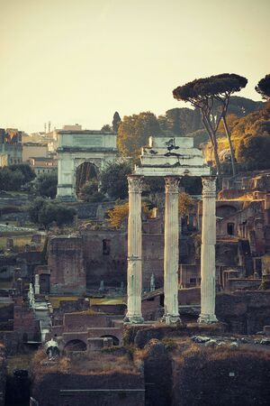 urban culture: Columns. Rome Forum with ruins of historical buildings. Italy.